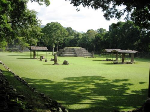 マヤ文明の謎に迫る
