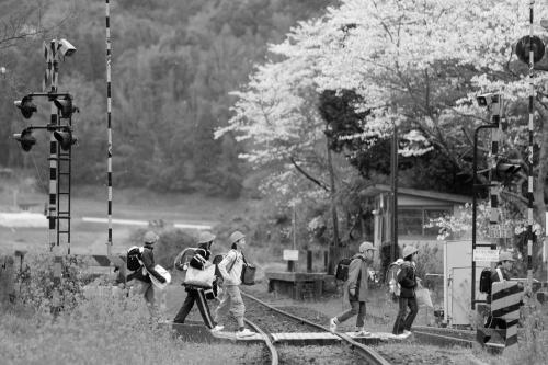 「車両のない鉄道写真」の魅力
