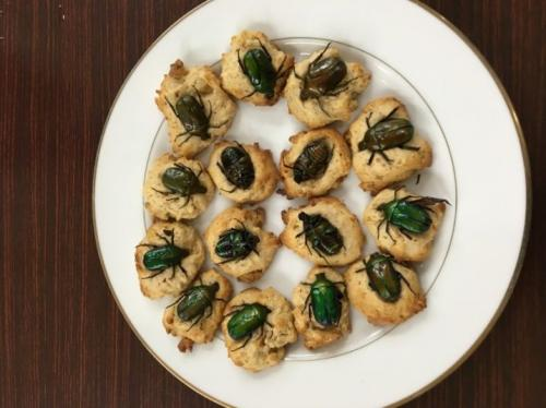 昆虫食は古代から来た未来食