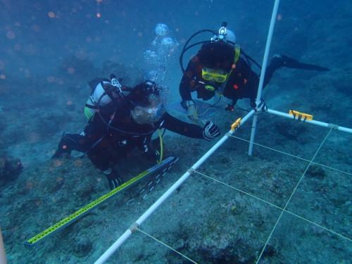 海洋考古学の世界