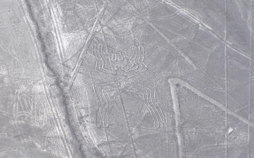 ナスカの地上絵の謎に迫る