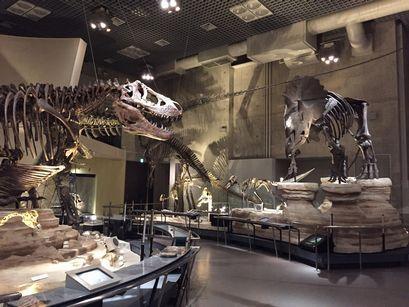 最新「恐竜学入門」