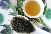 中国茶deうるおいプラス