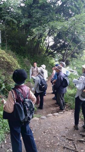 京・鎌倉往還を歩く