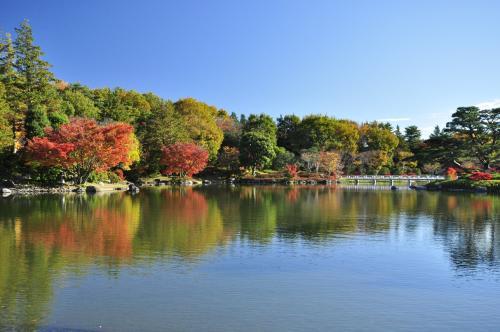 ©昭和記念公園
