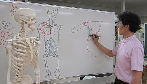 絵を描く人のための美術解剖学入門