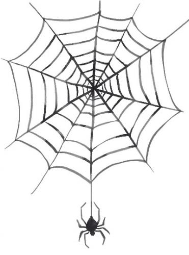 クモの糸の驚きの性質とは?