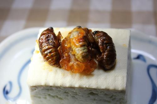 セミチリ豆腐