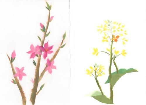 3月 桃の花 又は 菜の花