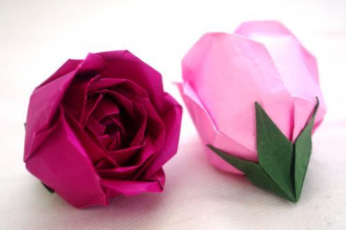 「薔薇S2」
