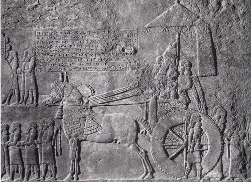 チャリオットに乗って行進するアッシリア王アッシュルバニパル(在位 紀元前668-627年)