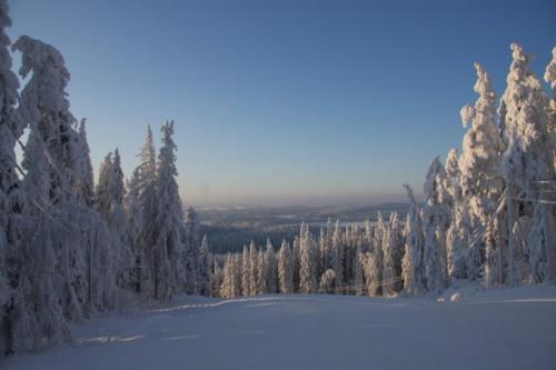 冬のフィンランド・講師撮影