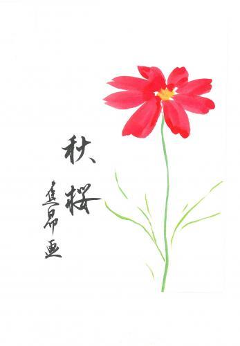 『秋桜』を描く