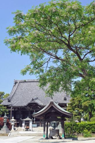 本覚寺 写真提供:鎌倉観光協会