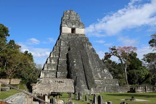 グアテマラ世界遺産のティカル遺跡の「神殿1」(撮影:青山和夫)