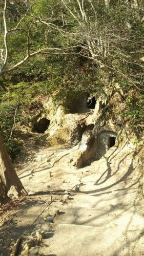 大磯町 楊谷寺谷戸横穴墓群(神奈川県指定史跡)