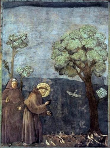 小鳥に説教するフランチェスコ(アッシジ、フランチェスコ大聖堂)