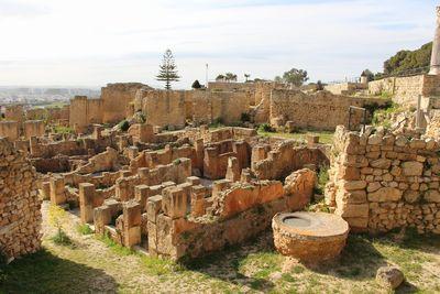 カルタゴ遺跡(チュニジア)