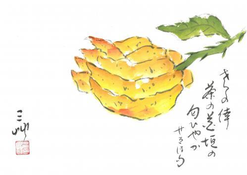 「仏手柑(ぶっしゅかん)」